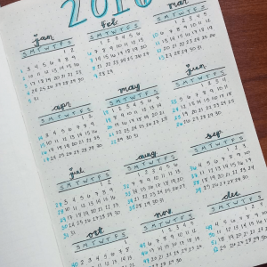 Yearly Spread from Instagram user @coloradoplanning. journal Yearly Spread Gallery. Templates, Inspiration, Giveaways and more at lifebywhitney.com.