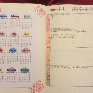 Yearly Spread from Instagram user @drstrout. journal Yearly Spread Gallery. Templates, Inspiration, Giveaways and more at lifebywhitney.com.