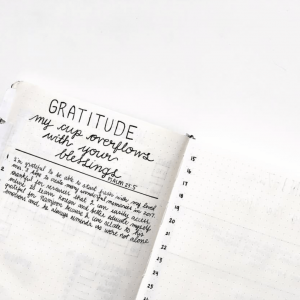 Gratitude trackers in your journal. This is a collection of several from Instagram. Thanks @b.studies!