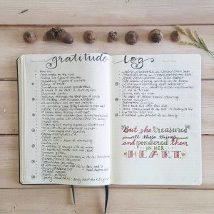 Gratitude trackers in your journal. This is a collection of several from Instagram. Thanks @oak.tree.journaling!