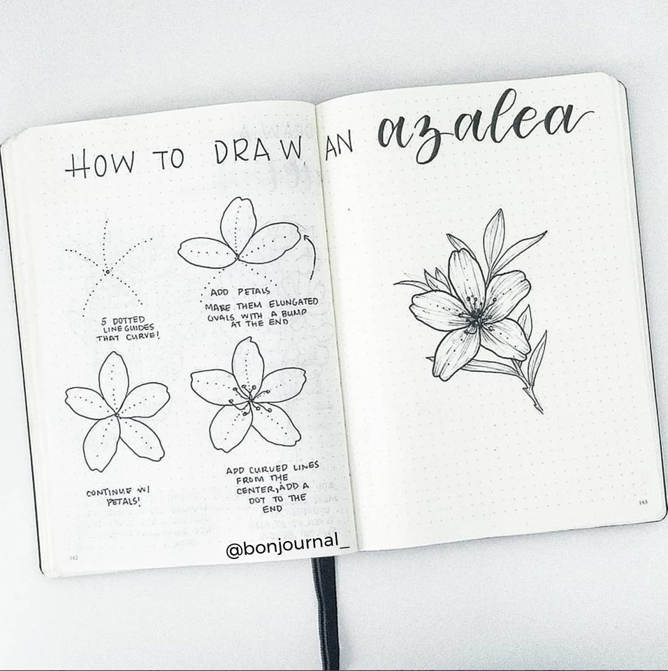 Learn to draw lovely flowers with @bonjournal_! Master Doodling with 20+ Inspirational Doodle Accounts