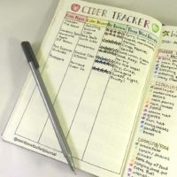 Love this cider tracker from @rainbowbulletjournal! Check out 50+ meal planning, grocery shopping, meal tracking, meal ideas, food doodling, booze tracking, menu planning, and more at lifebywhitney.com.