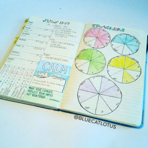 Love this circle tracker from @bluecatlotus. See more circle tracker inspiration at lifebywhitney.com!