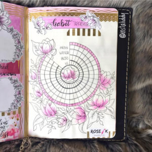 Love this circle tracker from @instaliddy. See more circle tracker inspiration at lifebywhitney.com!